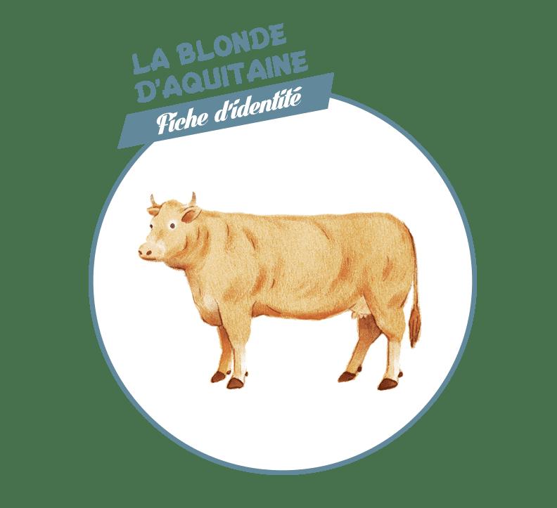 Blonde-d'Aquitaine