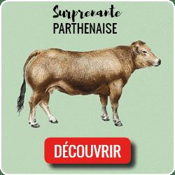 CTA Parthenaise3